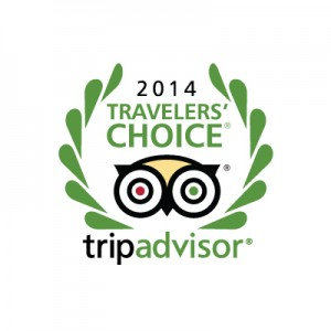 TripAdvisor2014-TravelersChoice-300x300