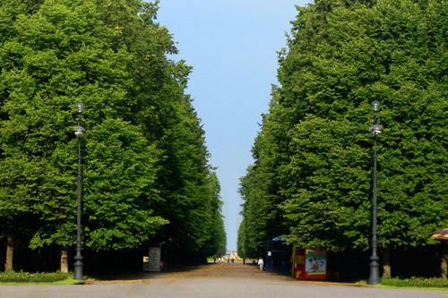 Приморский парк Победыо